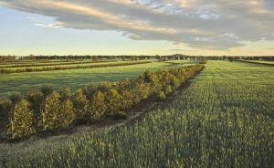 carbon farming 2