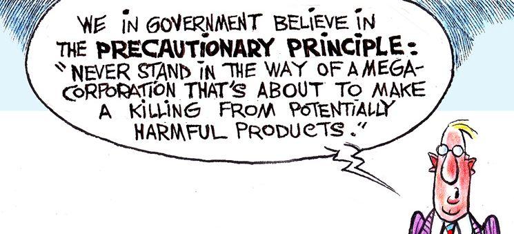 """Résultat de recherche d'images pour """"precautionary principle"""""""