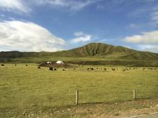 Traditional Tibetan yak herder tent dwellings