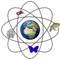 nuclear biodiversity