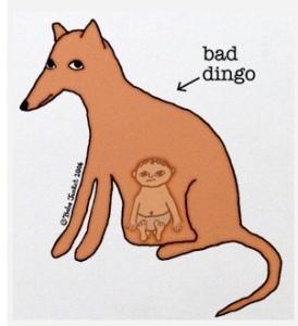bad dingo