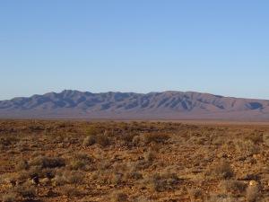 Looking east toward the northern Flinders Ranges from Ediacara Conservation Park. © CJA Bradshaw