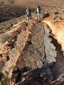 Guy Narbonne & Jim Gehling looking over a jigsaw puzzle of sandstone containing hundreds of fossils.