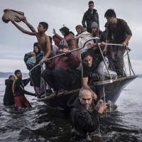 Human population growth, refugees & environmental degradation