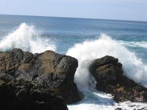 Bradshaw-Waves breaking on rocks Macquarie Island