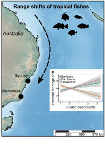 tropical fishes range shifts