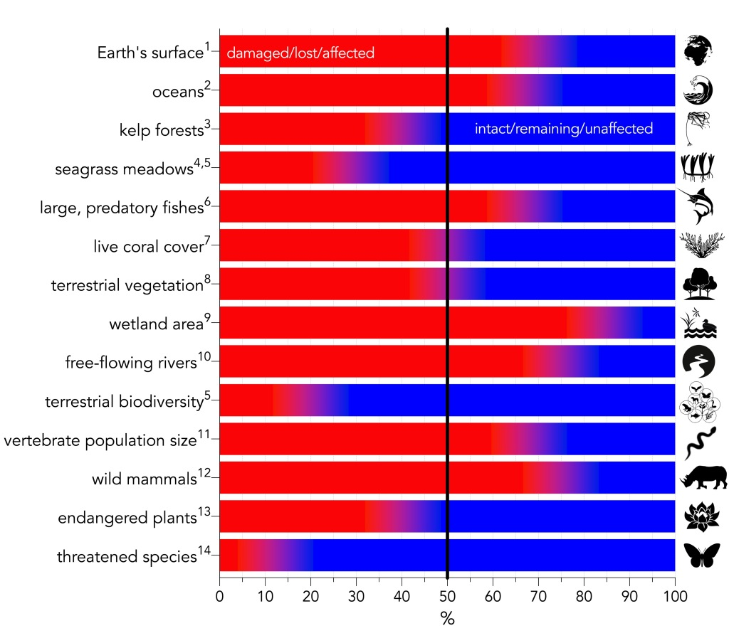 Summary of major environmental-change categories expressed as percentage relative to the baseline given in the text. Red indicates the percentage of the category that is damaged, lost, or otherwise affected, whereas blue indicates the percentage that is intact, remaining, or otherwise unaffected. Superscript numbers indicate the following references: 1IPBES, 2019; 2Halpern et al., 2015; 3Krumhansl et al., 2016; 4Waycott et al., 2009; 5Díaz et al., 2019; 6Christensen et al., 2014; 7Frieler et al., 2013; 8Erb et al., 2018; 9Davidson, 2014; 10Grill et al., 2019; 11WWF, 2020; 12Bar-On et al., 2018; 13Antonelli et al., 2020; 14Mora et al., 2011.