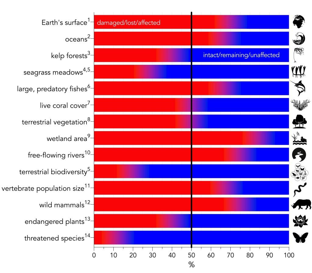 Summary of major environmental-change categories expressed as percentage relative to the baseline given in the text. Red indicates the percentage of the category that is damaged, lost, or otherwise affected, whereas blue indicates the percentage that is intact, remaining, or otherwise unaffected. Superscript numbers indicate the following references: 1IPBES, 2019; 2Halpern et al., 2015; 3Krumhansl et al., 2016; 4Waycott et al., 2009; 5Díaz et al., 2019; 6Christensen et al., 2014; 7Frieler et al., 2013; 8Erb et al., 2018; 9Davidson, 2014; 10Grill et al., 2019; 11WWF, 2020; 12Bar-On et al., 2018; 13Antonelli et al., 2020; 14Mora et al., 2011.